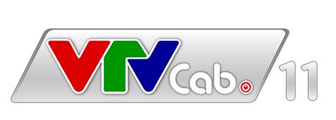 VTVCab11