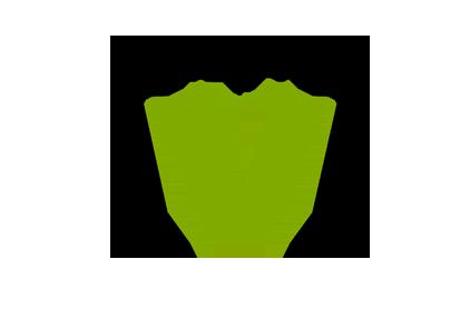 Kênh Channel V