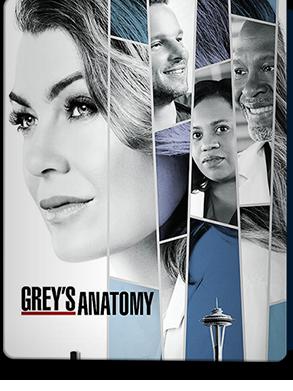 Grey's Anatomy Mùa 14